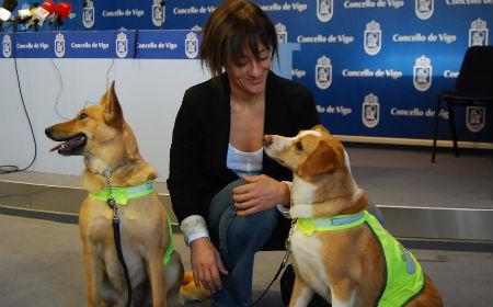 Chus con perras/Tresyuno Comunicación