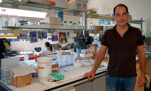 O investigador Ramón Álvarez Puebla.