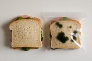 Resultado de imagen de comida caducada