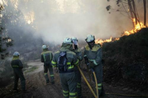 Centos de galegos estiveron toda a fin de semana e seguen este domingo, loitando contra o lume nas catro provincias galegas