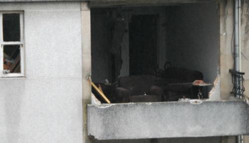 La vivienda de San Salvador destruida por la explosión/Foto:vigoalminuto