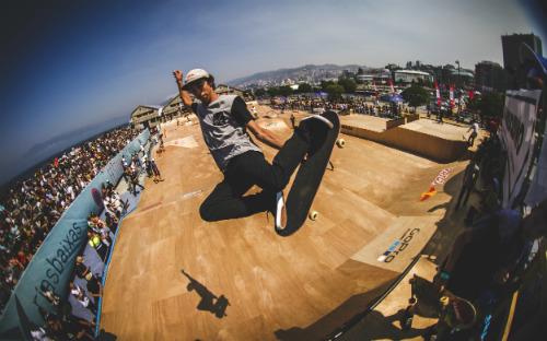 Skateboard39