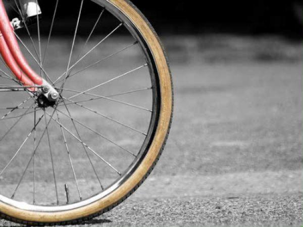 bici rueda