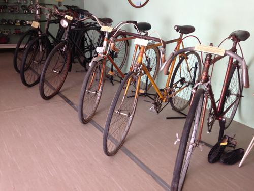 nigran expo bicicleta