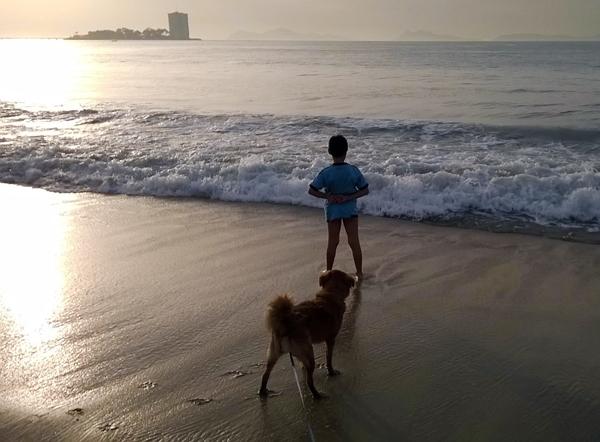 playa canina