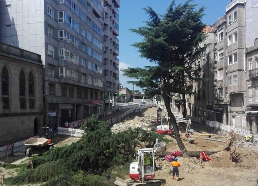 Cedros Ronda Don Bosco Vigo