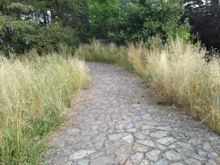 Abandono Parque da Guía Vigo