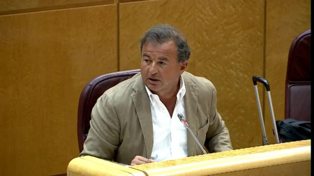 Javier Guerra, senador PP