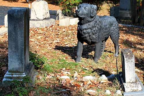 Nuevo cementerio de mascotas en Vigo