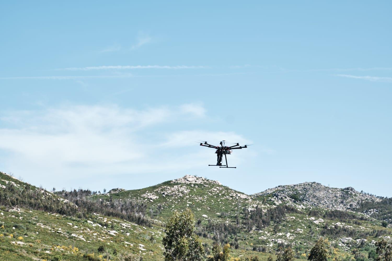 Leroy Merlin planta 10 000 árboles en Cerdedo-Cotobade, mediante drones