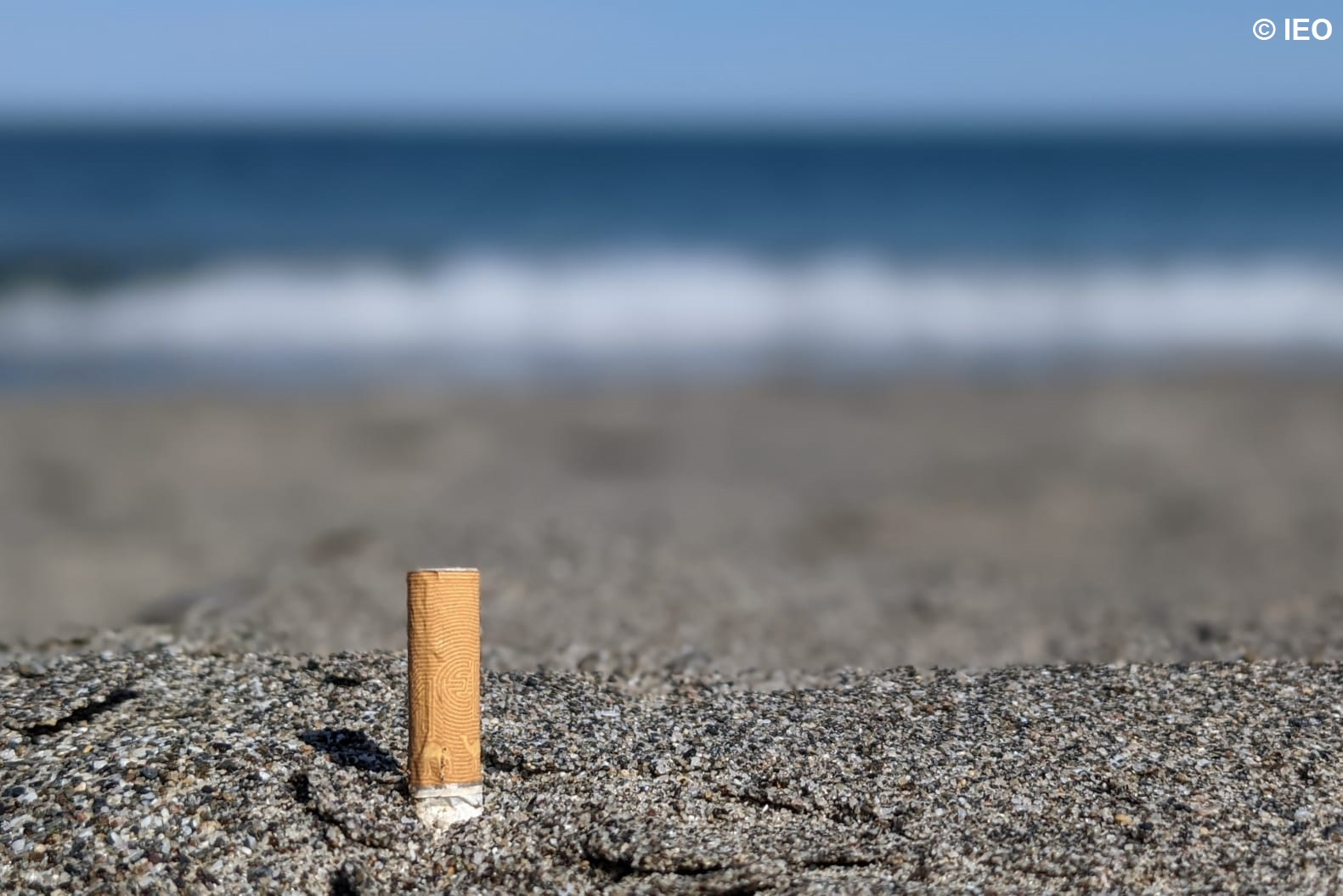Colillas playa