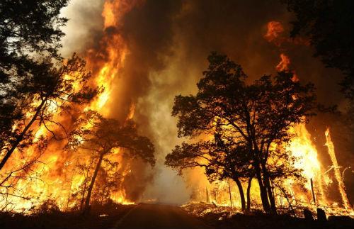 Estabilizados los incendios de Ribas de Sil que han arrasado 1.600 hectáreas