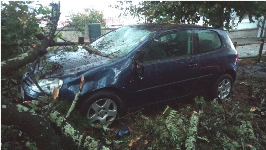 La caída de árboles causa varios daños en distintas partes de Vigo