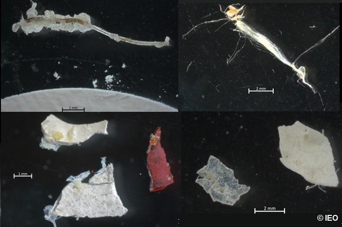Plásticos Ría de Vigo