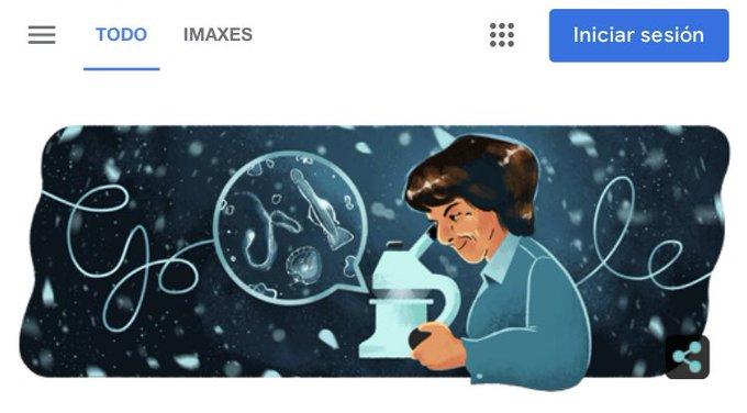 O 'doodle' de Google para Ángeles Alvariño, a galega precursora da investigación oceanográfica no mundo