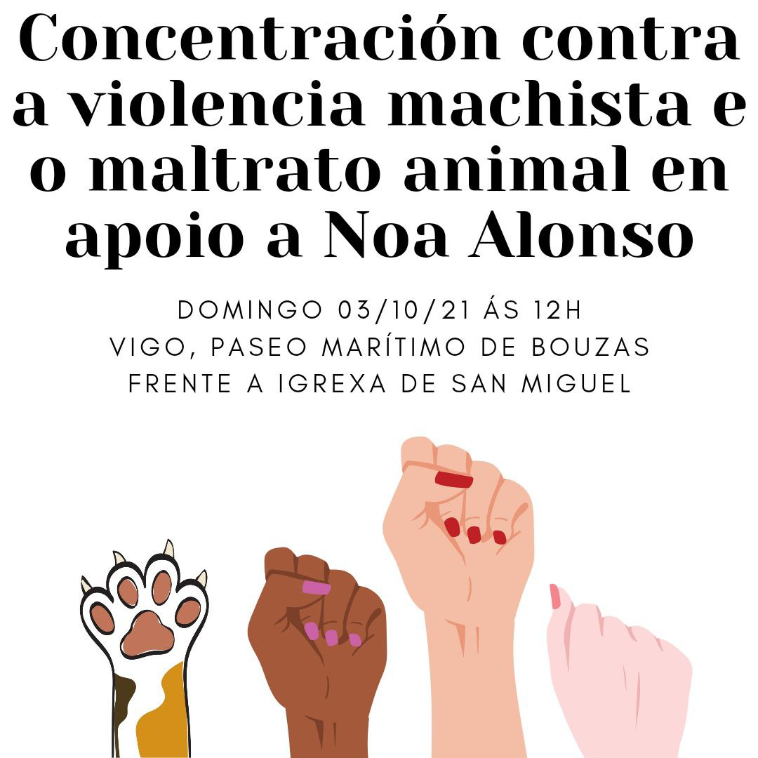 Concentraci´ón en apoio á veciña de Vigo agredida polo dono dun can ao que estaba maltratando